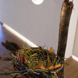 """""""Электрическое гнездо"""" / photo Belousov"""